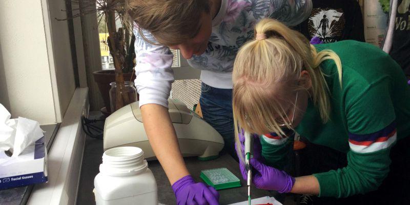 DNA-onderzoeker voor een dag